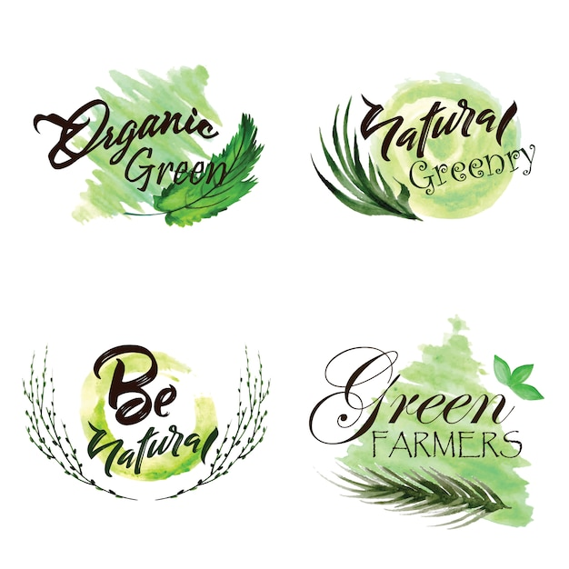 水彩緑の葉ロゴコレクション 無料ベクター