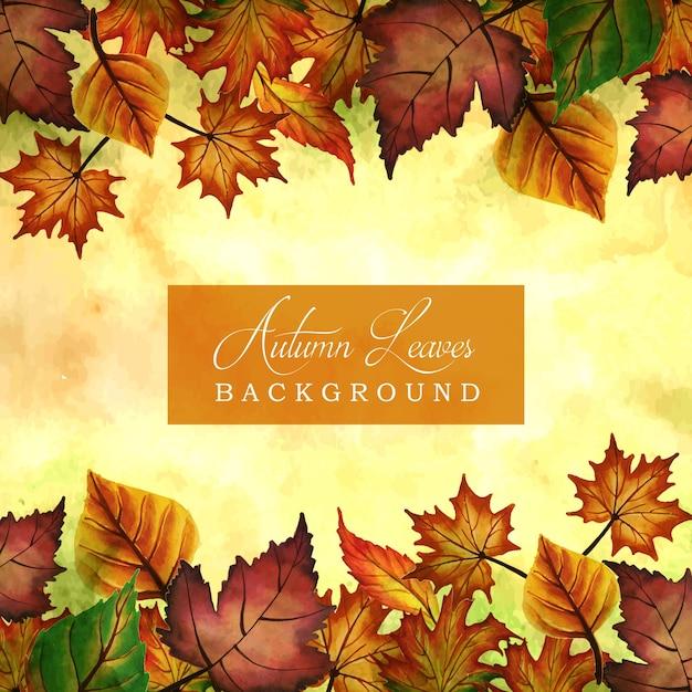 Осенние фоны с акварелью оранжевые, желтые и зеленые листья Бесплатные векторы