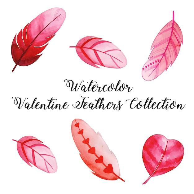 Акварель валентина перо коллекция Premium векторы