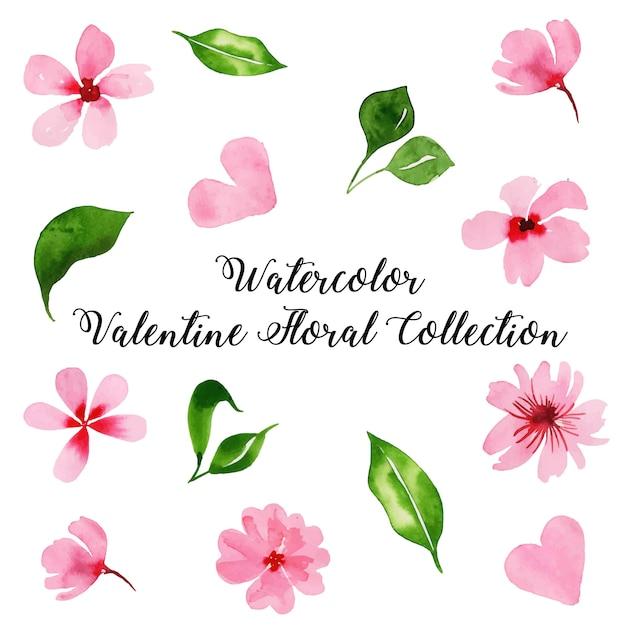 Акварель валентина цветочная коллекция Premium векторы