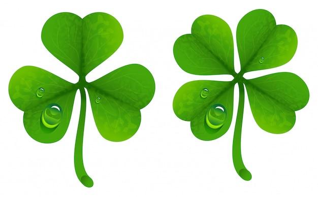Листья клевера с каплями росы. счастливый клеверный лист. четырехлистный и трехлистный клевер Premium векторы