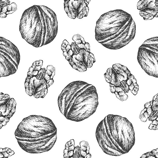 Грецкий орех рисунок