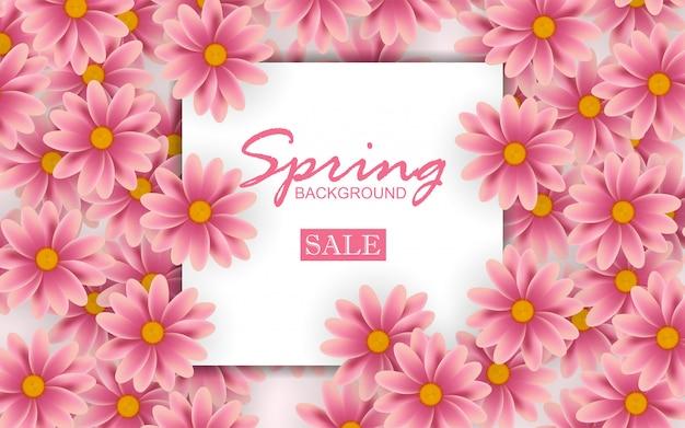 Красивая летняя концепция фон с розовым цветком Premium векторы