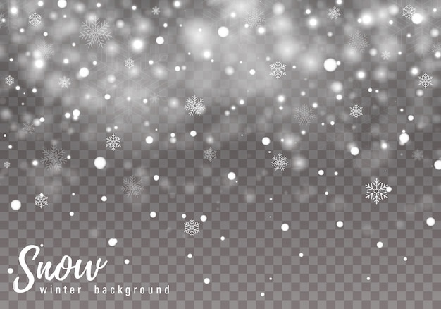 雪が降る背景 Premiumベクター