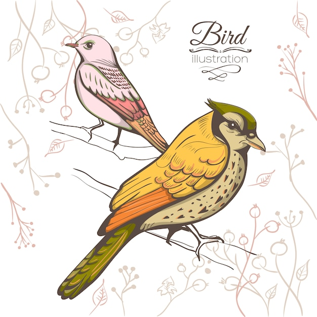 鳥のイラスト。手作りの背景。 無料ベクター