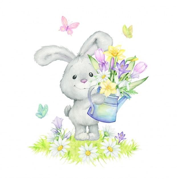 ウサギ、ヒナギク、蝶、スノードロップ、ユリの谷、クロッカス、葉、草、じょうろ。水彩春イラスト Premiumベクター