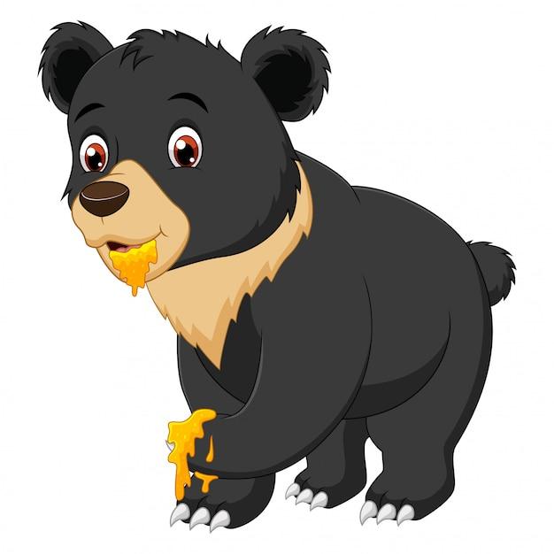 Забавный мультяшный медведь ест сладкий мед Premium векторы