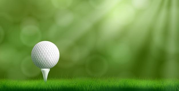 Мяч для гольфа на тройнике реалистичные векторные иллюстрации Бесплатные векторы