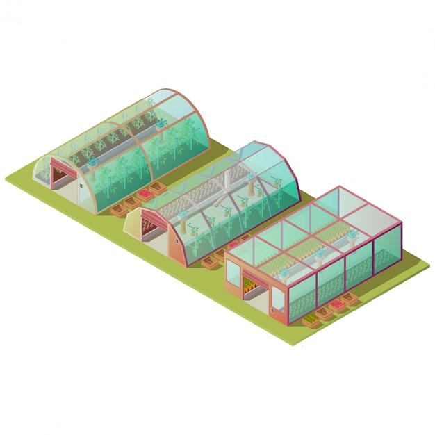 孤立した等尺性の温室と農場の建物 無料ベクター