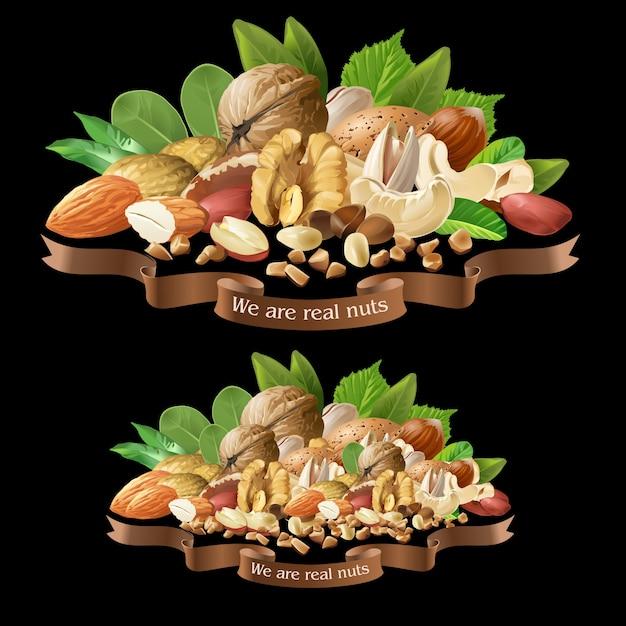 Векторные иллюстрации смесь орехов разных типов Бесплатные векторы
