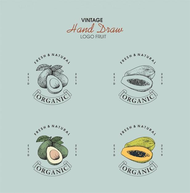 Урожай логотип фрукты рисованной стиль Premium векторы