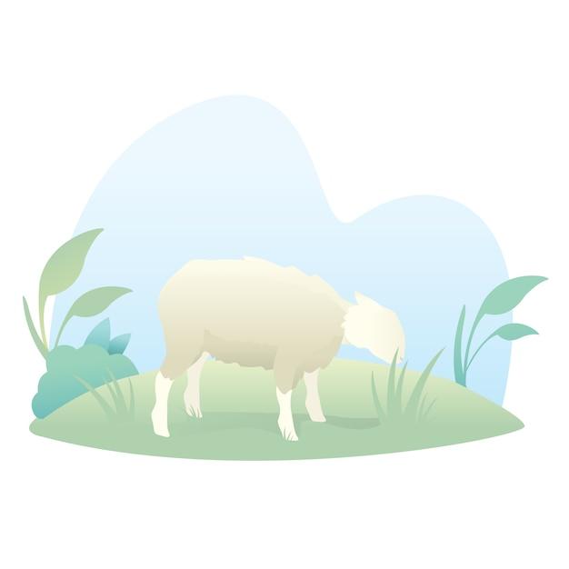 Иллюстрация милый мультфильм овец, чтобы отпраздновать ид аль-адха Premium векторы