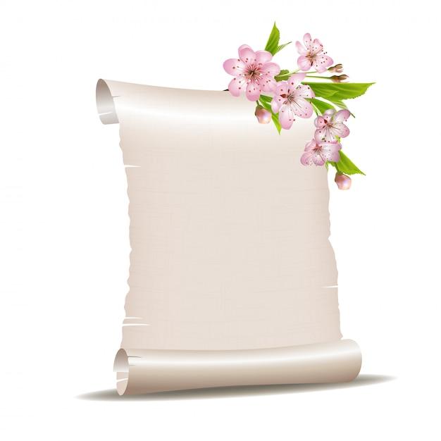 Свиток бумаги с цветущей вишневой веткой Premium векторы