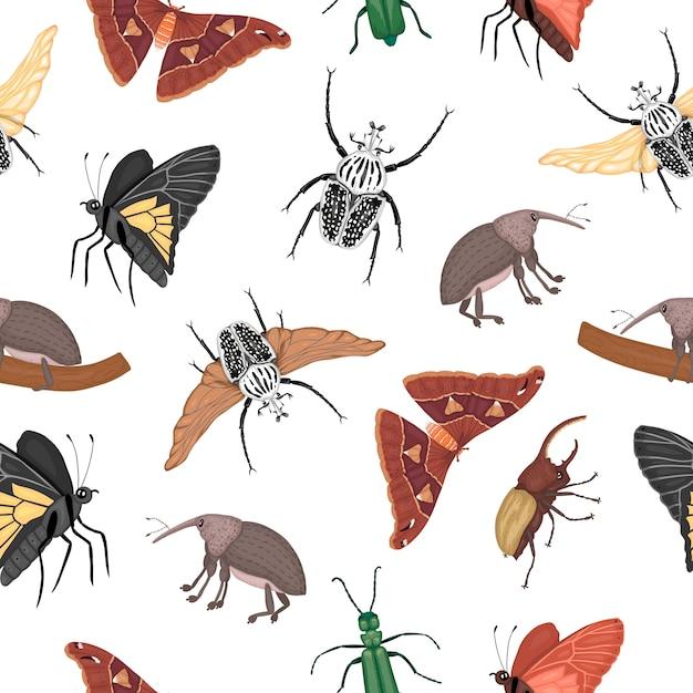 Бесшовный фон из тропических насекомых. повторите фон рисованной цветной атлас моли, долгоносика, бабочки, голиафа, жука геркулеса, испанской мухи. красочный милый орнамент тропических ошибок. Premium векторы