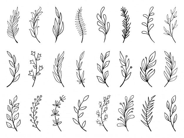 Цветочные ветви, венок рисованной цветок каракули линии набор, коллекция растений кисти. Premium векторы