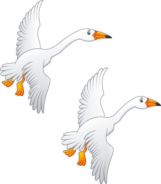 Летающий лебедь высокого качества цвета Premium векторы