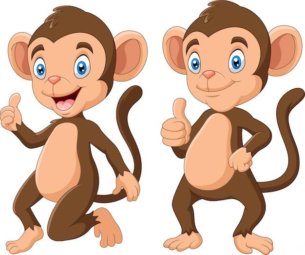 Набор милых обезьян иллюстрации шаржа Premium векторы