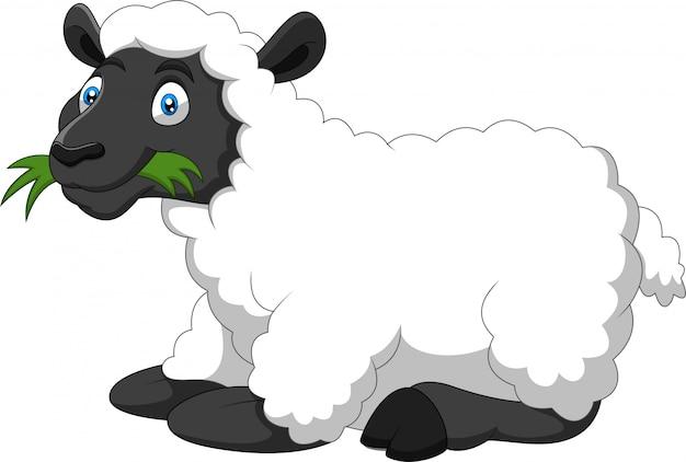 Мультяшный смешной овец ест траву Premium векторы