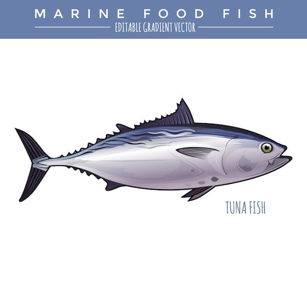 Тунец. морская пища рыба Premium векторы