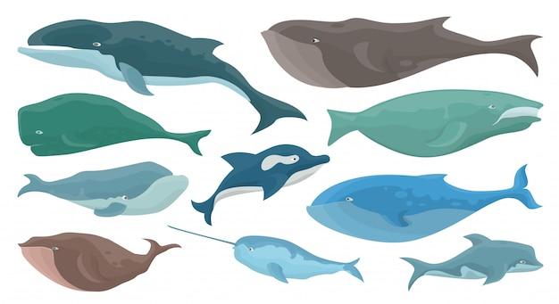 Набор морских китов Premium векторы