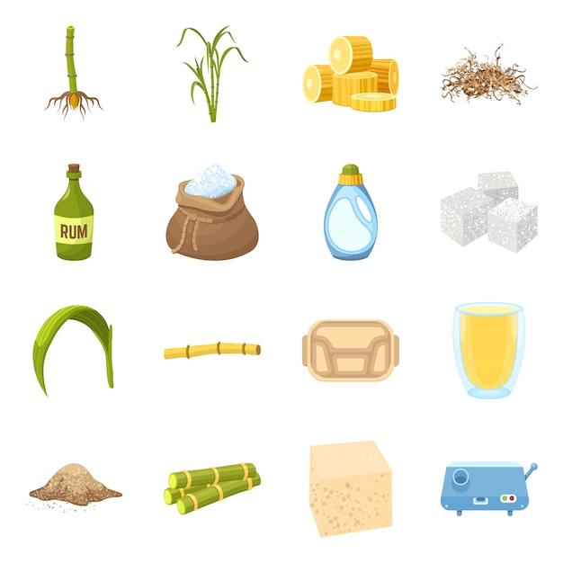 サトウキビ漫画の要素。サトウキビ植物の要素を農場の自然の葉で設定します。 Premiumベクター