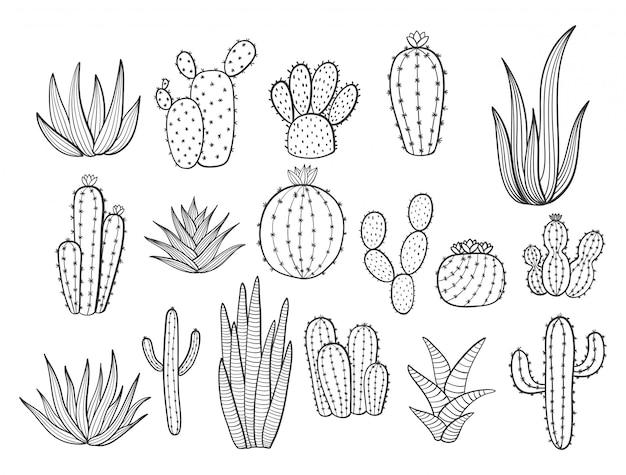 ポットにかわいい手描きのサボテン。サボテン、観葉植物、花、多肉植物、白のポット Premiumベクター