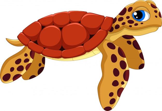 Милый мультфильм морская черепаха Premium векторы