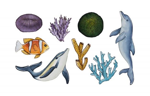 Коллекция дельфинов, кораллов и рыбных элементов Premium векторы