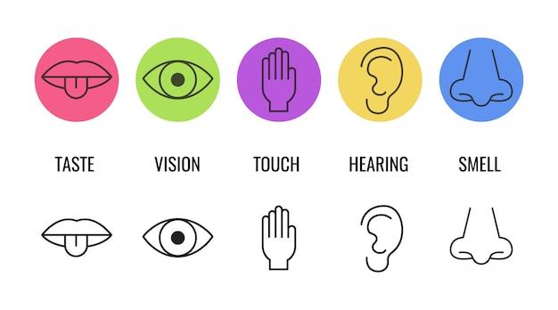 Набор иконок из пяти человеческих чувств Premium векторы