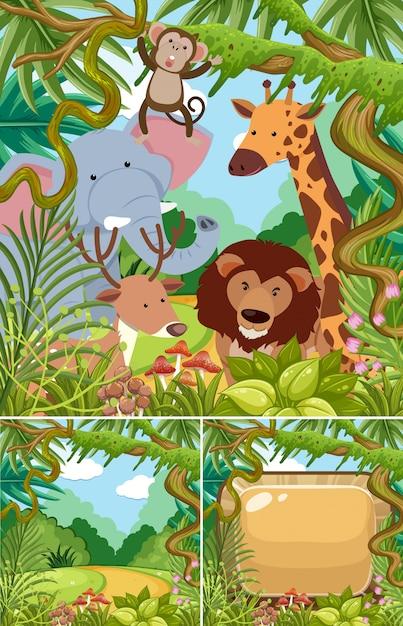 ジャングルの野生動物の自然の風景 Premiumベクター