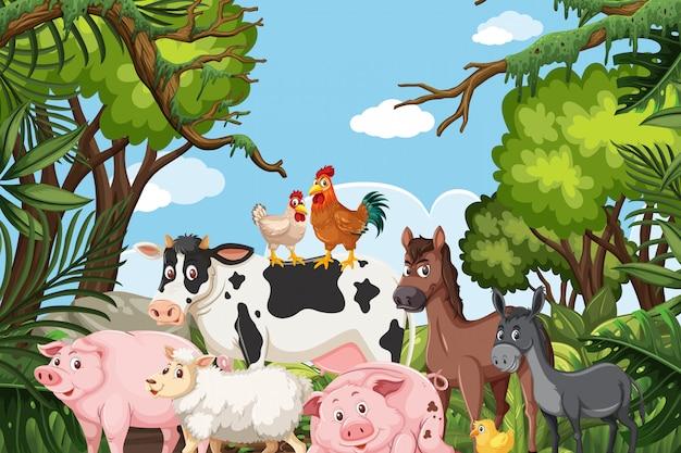 ジャングルのシーンの農場の動物 Premiumベクター
