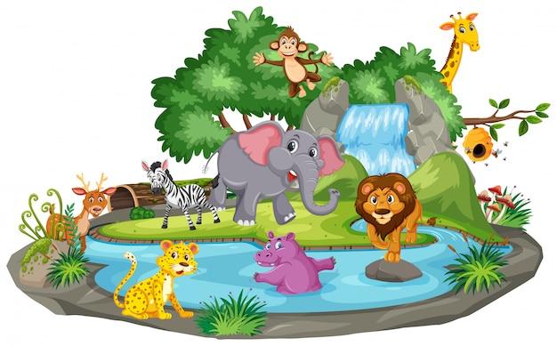 滝で多くの動物の背景シーン Premiumベクター