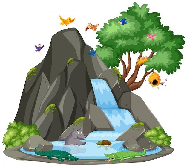 滝と鳥の背景シーン Premiumベクター