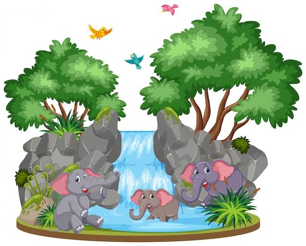 滝で象の背景シーン Premiumベクター