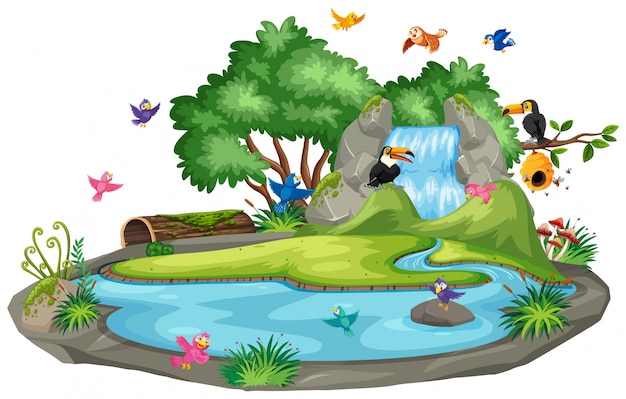 Фоновая сцена птиц у водопада Premium векторы