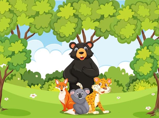 森にたくさんの野生動物がいるシーン Premiumベクター
