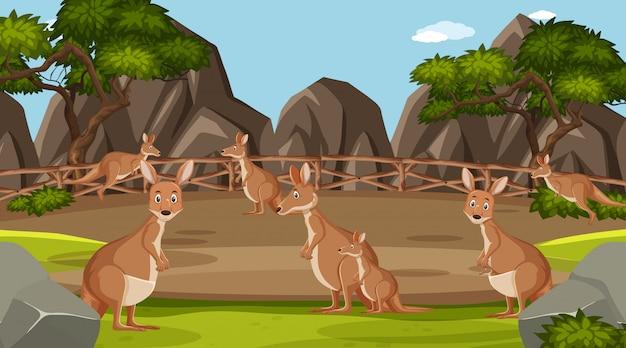 昼間の動物園の野生動物とのシーン Premiumベクター