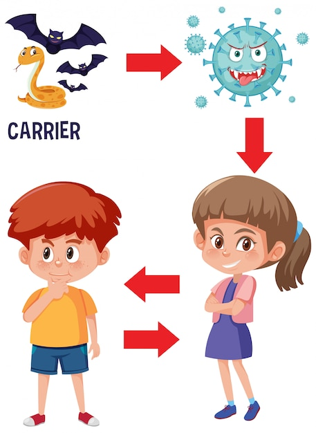Диаграмма, показывающая, как человек заболевает коронавирусом Premium векторы