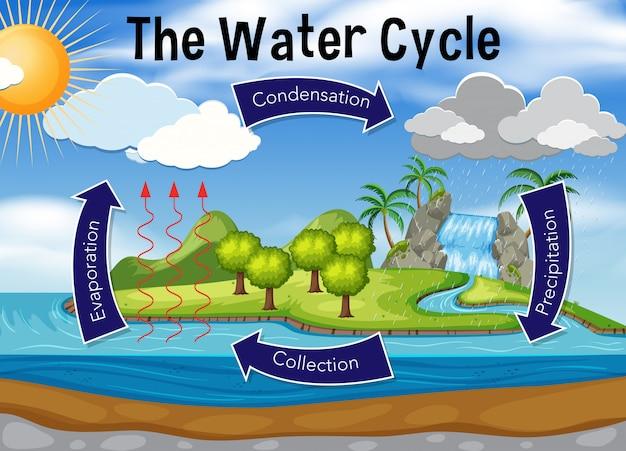 水循環の科学 Premiumベクター