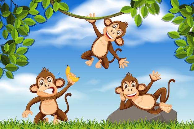 ジャングルのシーンで生意気な猿 Premiumベクター