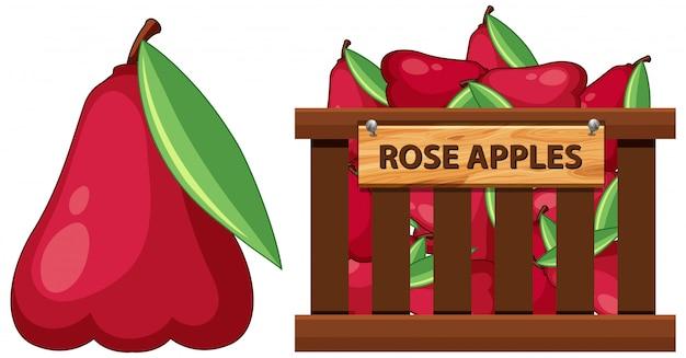 白地にバラのりんごがいっぱい入ったかご Premiumベクター