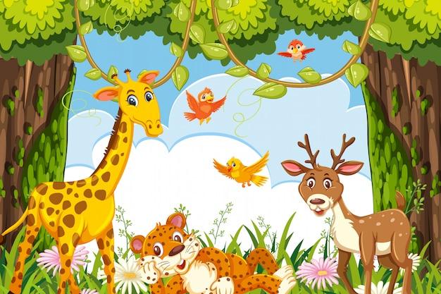 ジャングルのシーンでかわいい動物 Premiumベクター
