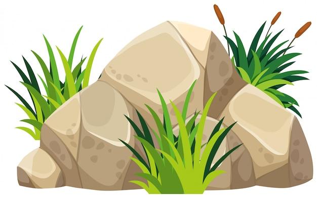 上の緑の草と茶色の岩 Premiumベクター