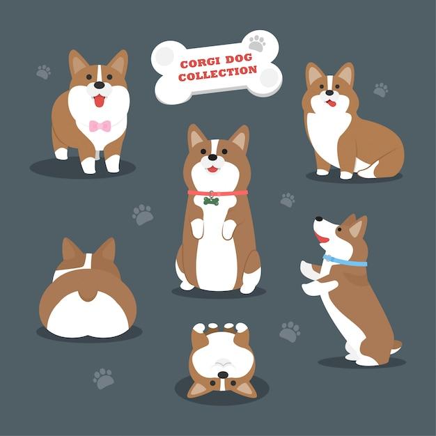 Векторная коллекция собак корги Premium векторы
