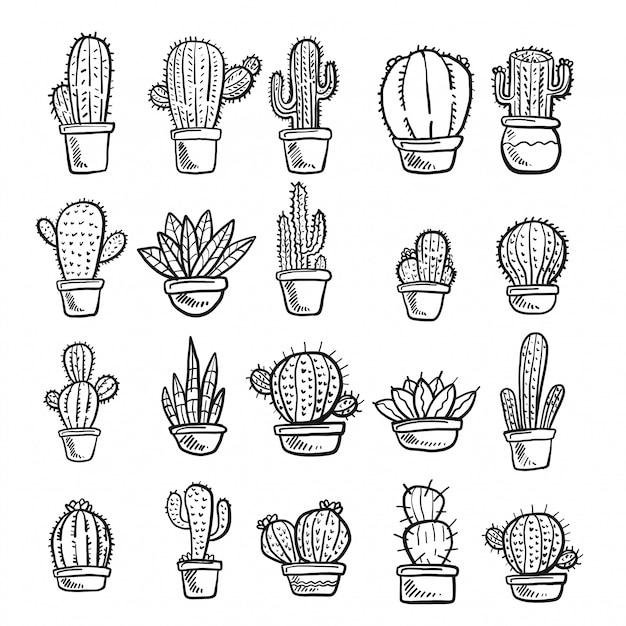 видим, картинки кактусы распечатать черно белое приклейте бумажные