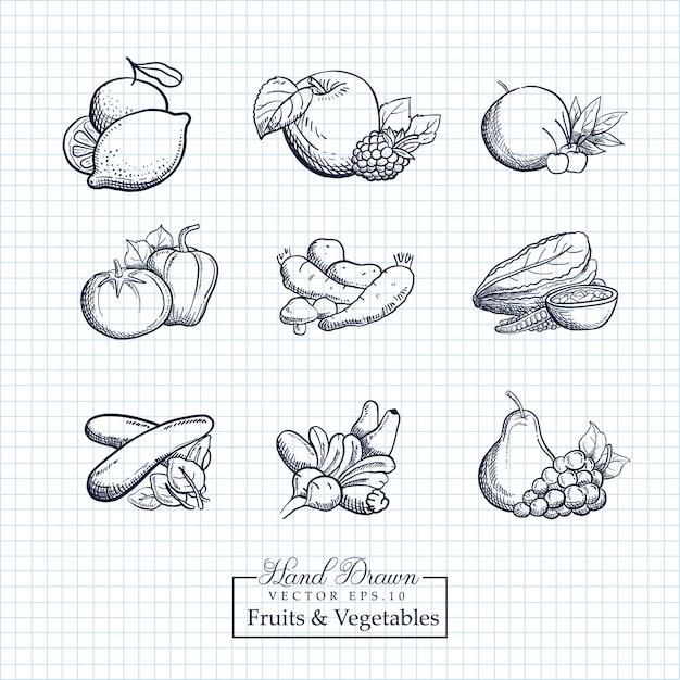 手描きのフルーツ&野菜のイラスト Premiumベクター