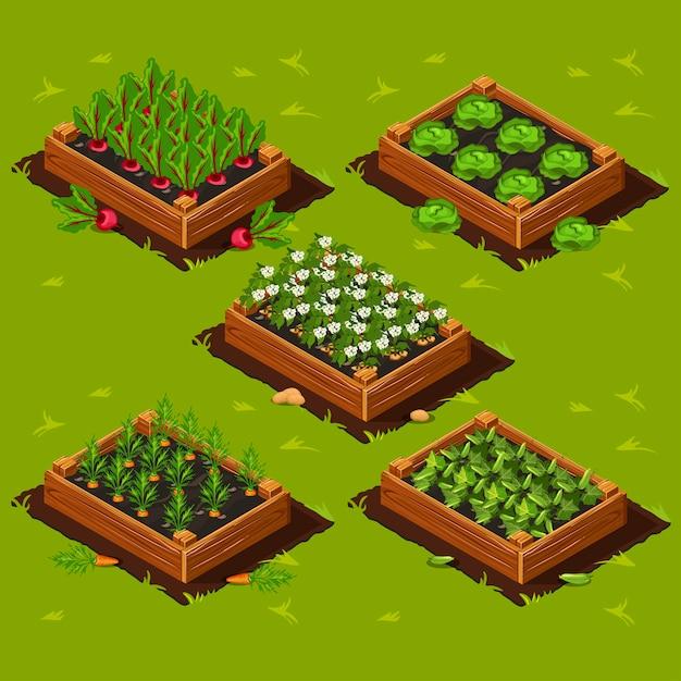 Коробка для огорода Premium векторы