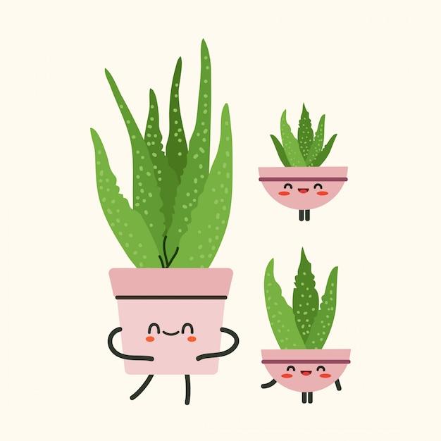 アロエベラ植物イラスト。孤立したベージュ色の背景にアロエベラのイラスト。 Premiumベクター