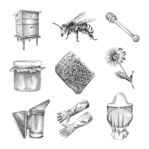 Набор рисованной эскиз пчеловодства. набор включает в себя улей, пчелу, осу, банку меда, деревянную ложку для меда, соты, цветок, перчатки пчелы, шляпу пчеловода, курильщика пчелы Premium векторы