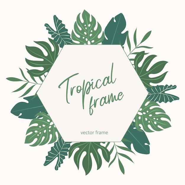 Тропический векторной рамки. Premium векторы